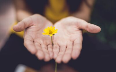 I Pray You Find Hope